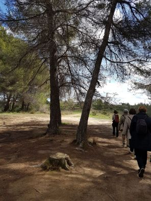 Connecta Cor - Camins d_Egara 2017 – 03 Rubi 02
