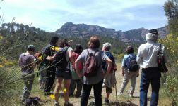 Connecta Cor - Camins d_Egara 2017 – 05 Sant Llorenç 06