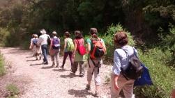 Connecta Cor - Camins d_Egara 2017 – 05 Sant Llorenç 08
