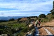 Connecta Cor - Camins d_Egara 2017 – 02 Pla de la Calma