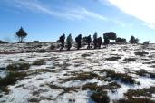 Connecta Cor - Camins d_Egara 2017 – 08 Pla de la Calma