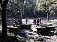 Connecta Cor - Camins d_Egara 2018 – 08 Collserola