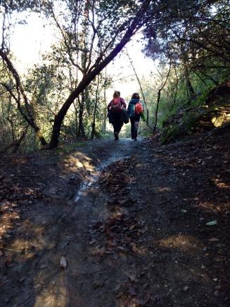 Connecta Cor - Camins d_Egara 2018 – 10 Collserola