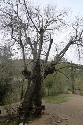 Connecta Cor - Camins d_Egara 2018 – 04 Sant Pons
